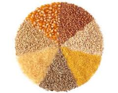 Foods from the earth: whole grains